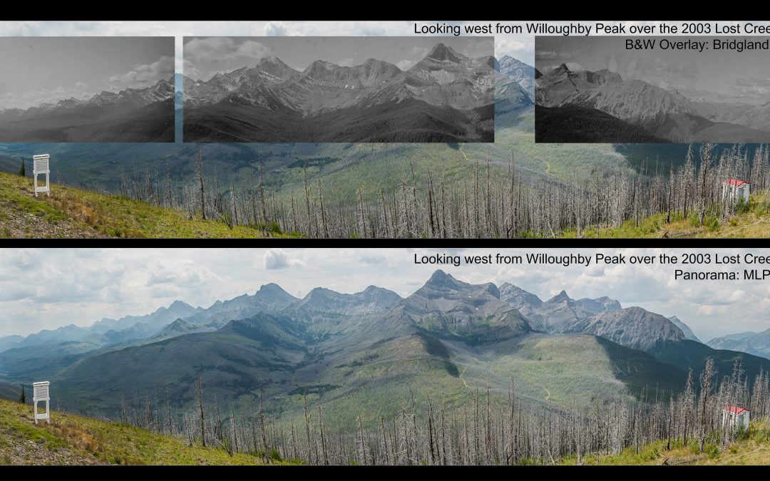 The View from Here: Panoramas of Change from Alberta's Fire Lookouts