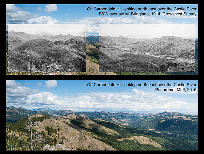 "Introducing ""A century of high elevation ecosystem change in the Canadian Rocky Mountains"""