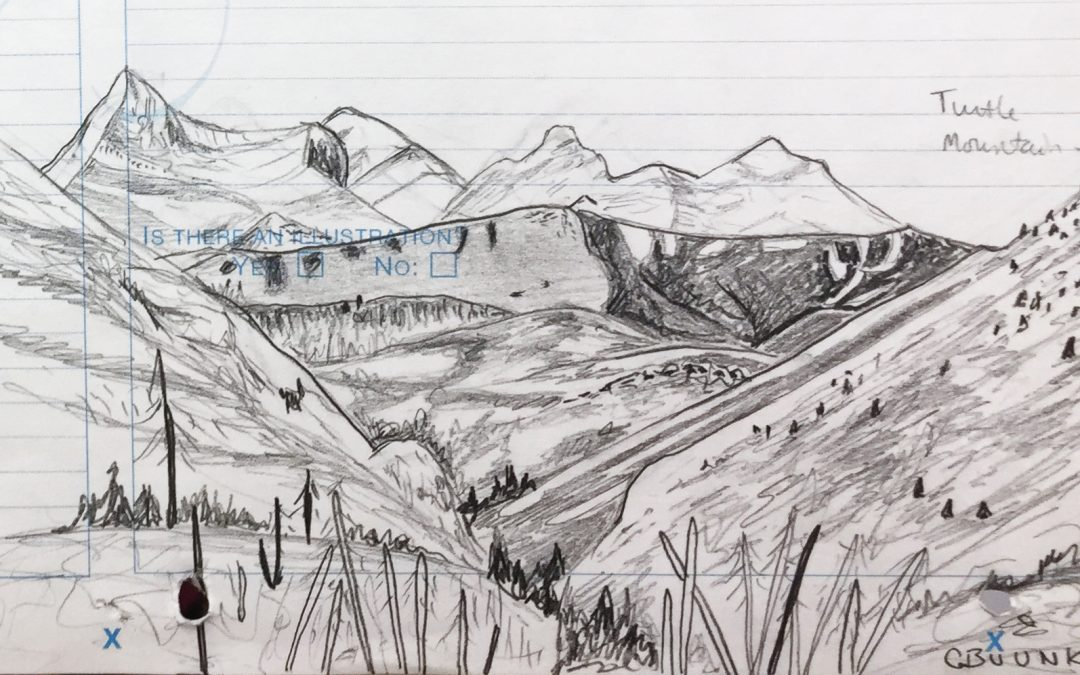 Drawings from the Field