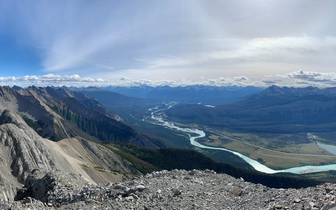 Fieldwork in a Time of COVID-19 Part 3: Jasper National Park